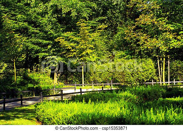 wiosna, park, czas - csp15353871
