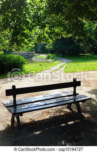 wiosna, park, czas - csp10164727