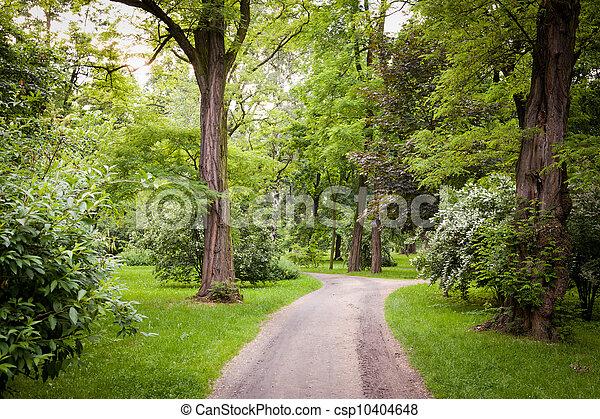 wiosna, park, czas - csp10404648