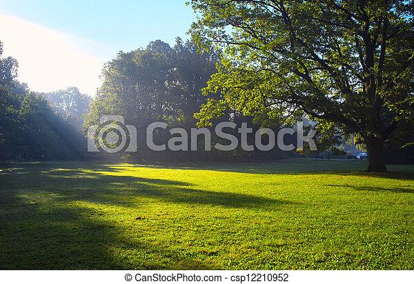wiosna, park, czas - csp12210952