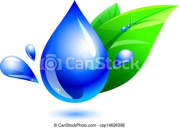 woda kapią, liść - csp14626396