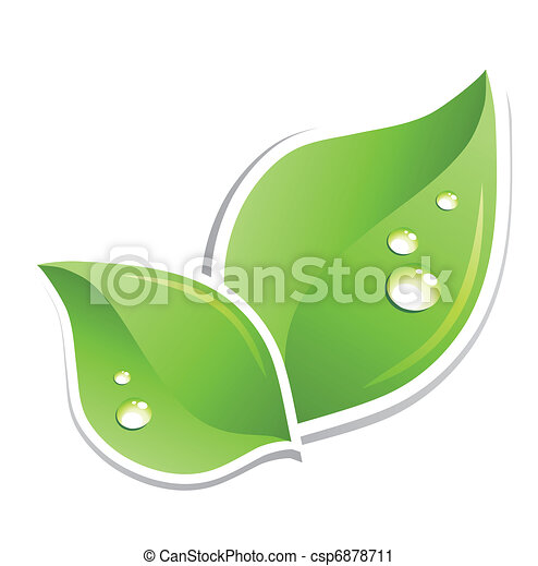 woda, zielony, wektor, liść, droplets. - csp6878711