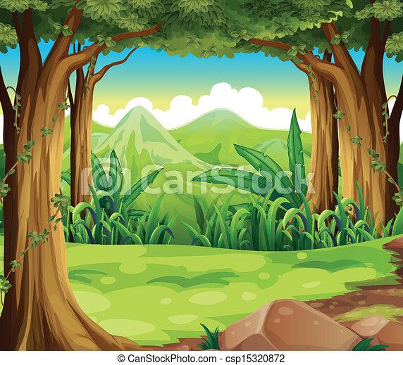 wysokie góry, zielony las, wszerz - csp15320872