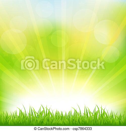 zielona trawa, sunburst, tło - csp7864333