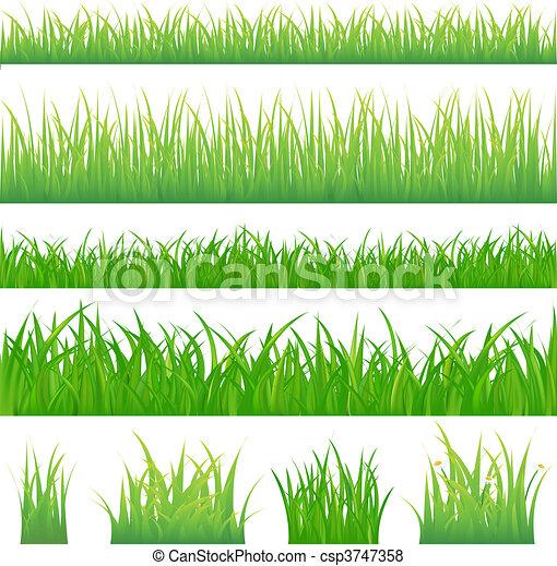 zielona trawa, tła, 4, kępki - csp3747358